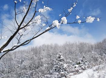 雪のち晴れ (1)