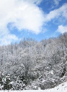雪のち晴れ (2)