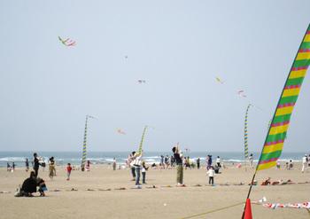 「世界の凧の祭典」の風景