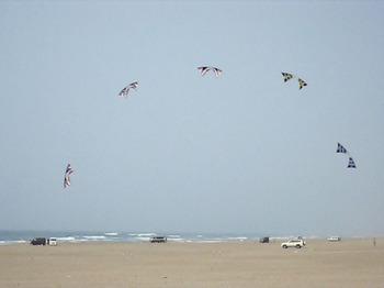 「世界の凧の祭典」スポーツカイト団体演技