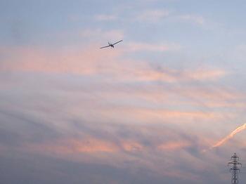 茜色の空を飛ぶ Savanna